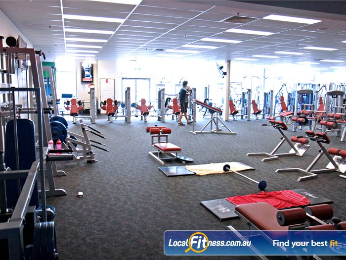 Goodlife Health Clubs Gym Collingwood Park  | The Ipswich gym includes an extensive selection of