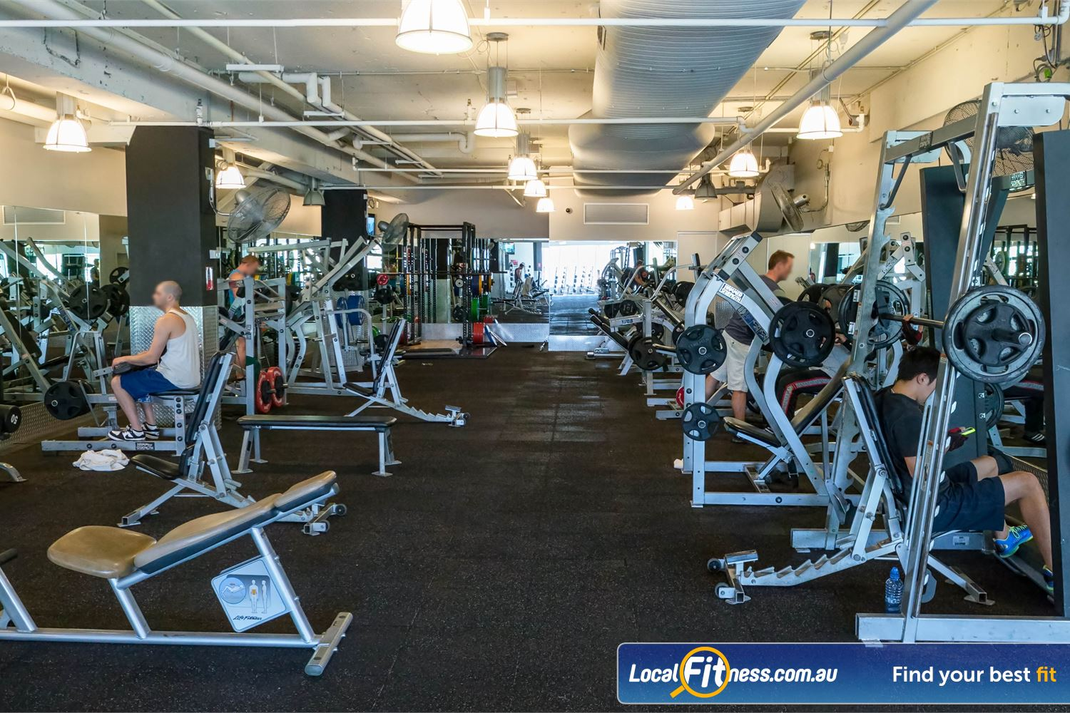 Fitness First Platinum Kings Cross Near Strawberry Hills Fully equipped free-weights area with state of the art Hammer Strength equipment.