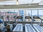 Fitness First Platinum Kings Cross Rushcutters Bay Gym Fitness Spectacular views of