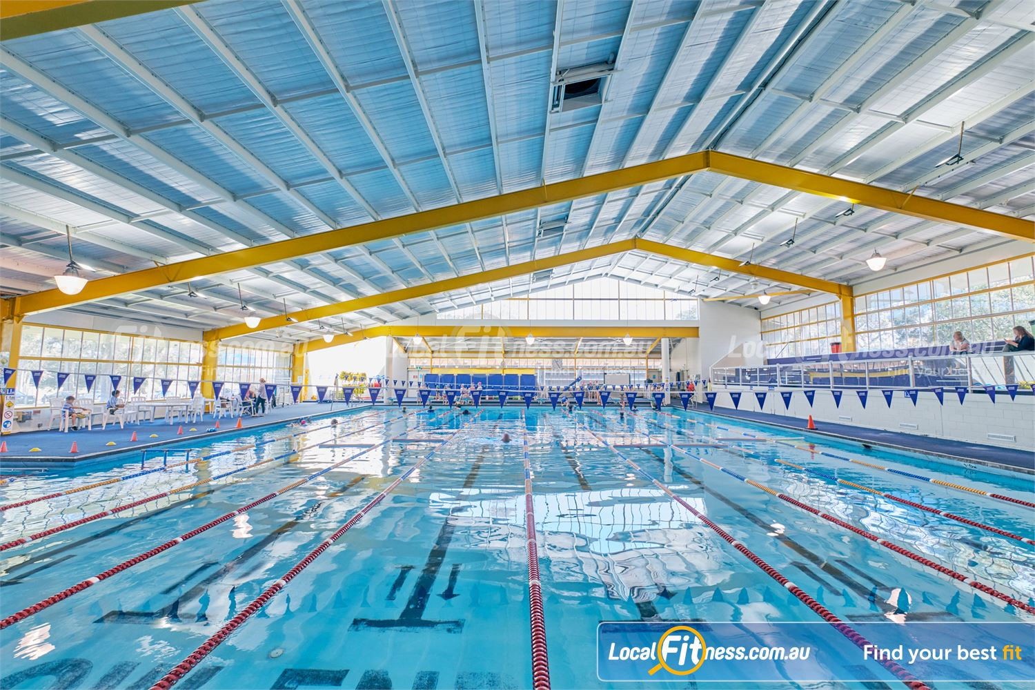 goodlife health clubs gym near mentone enjoy swimming access in our sandringham swimming pool