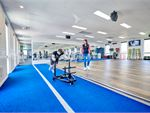 The dedicated functional training zone with indoor sled