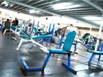 Westgate Health & Fitness Club Laverton North Gym Fitness Plenty of free-weights.