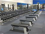 Genesis Fitness Clubs Windsor Gym Fitness Welcome to the Genesis Fitness