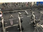Genesis Fitness Clubs Gordon Park Gym Fitness The full equipped free-weights