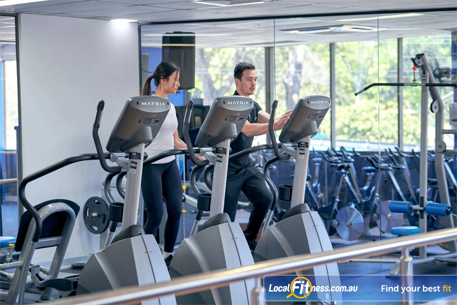 Goodlife Health Clubs Near Canterbury Plenty of cardio to choose from, overlooking the scenic greenery.