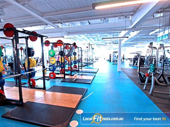 South Pacific Health Clubs Chadstone Gym Fitness Heavy duty lifting platforms