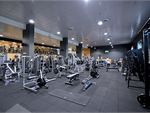 Goodlife Health Clubs Knoxfield Gym Fitness Fully equipped free-weights