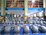 Goodlife Health Clubs Adelaide City Adelaide Gym Fitness Rows of cardio machines so you