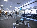 Goodlife Health Clubs Adelaide City Adelaide Airport Gym Fitness Our free-weights area is full