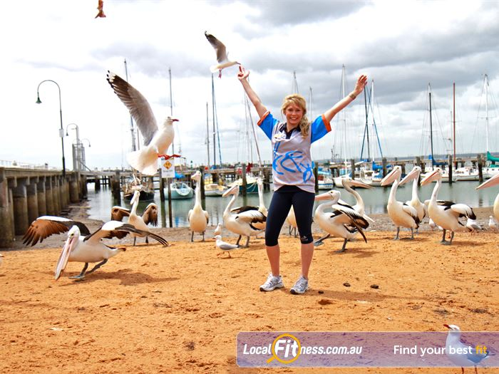 Pelican Park Recreation Centre Hastings Gym Fitness Train amongst the pelicans at