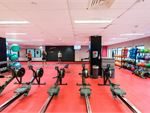 Fitness First Platinum Walker St North Sydney Gym Fitness Rows and rows of rowers so you