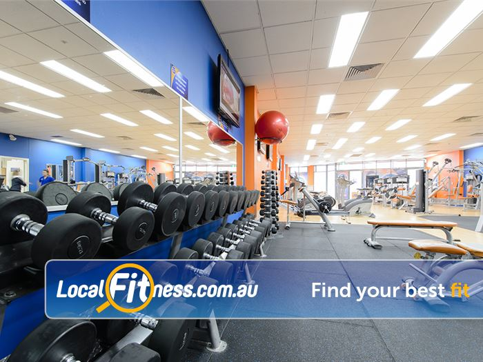 Plus Fitness Health Clubs Gladesville Full range of dumbbells, barbells and benches.