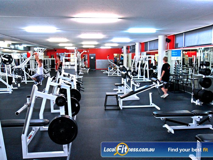 Goodlife Health Clubs Gym Cleveland  | The fully equipped Alexandra Hills free-weights gym area.