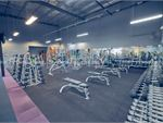 Element Fitness Health Club Vermont Gym Fitness Get unlimited free-weight