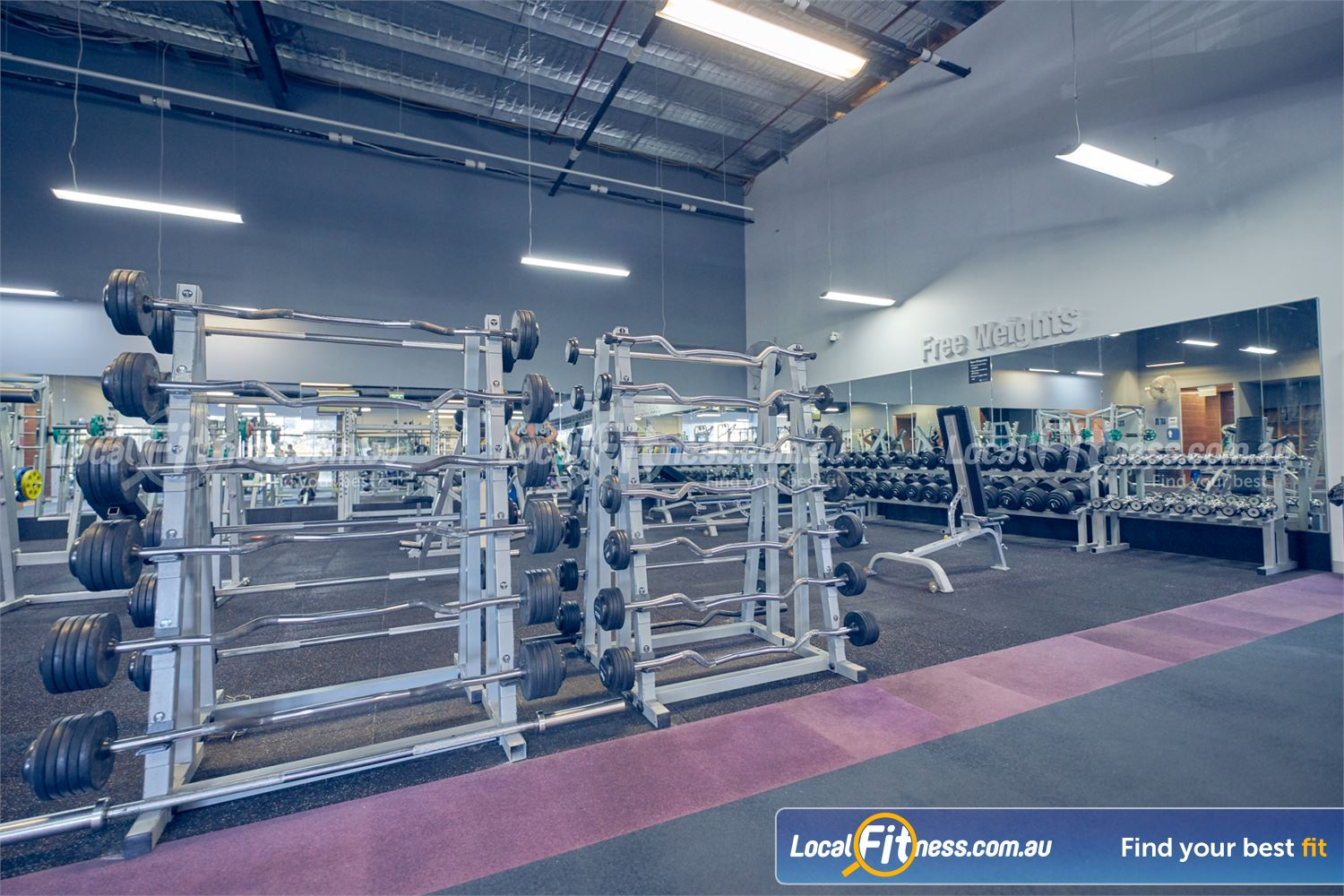 Element Fitness Health Club Near Mitcham Our free-weights area is fully equipped with barbells, dumbbells and more.