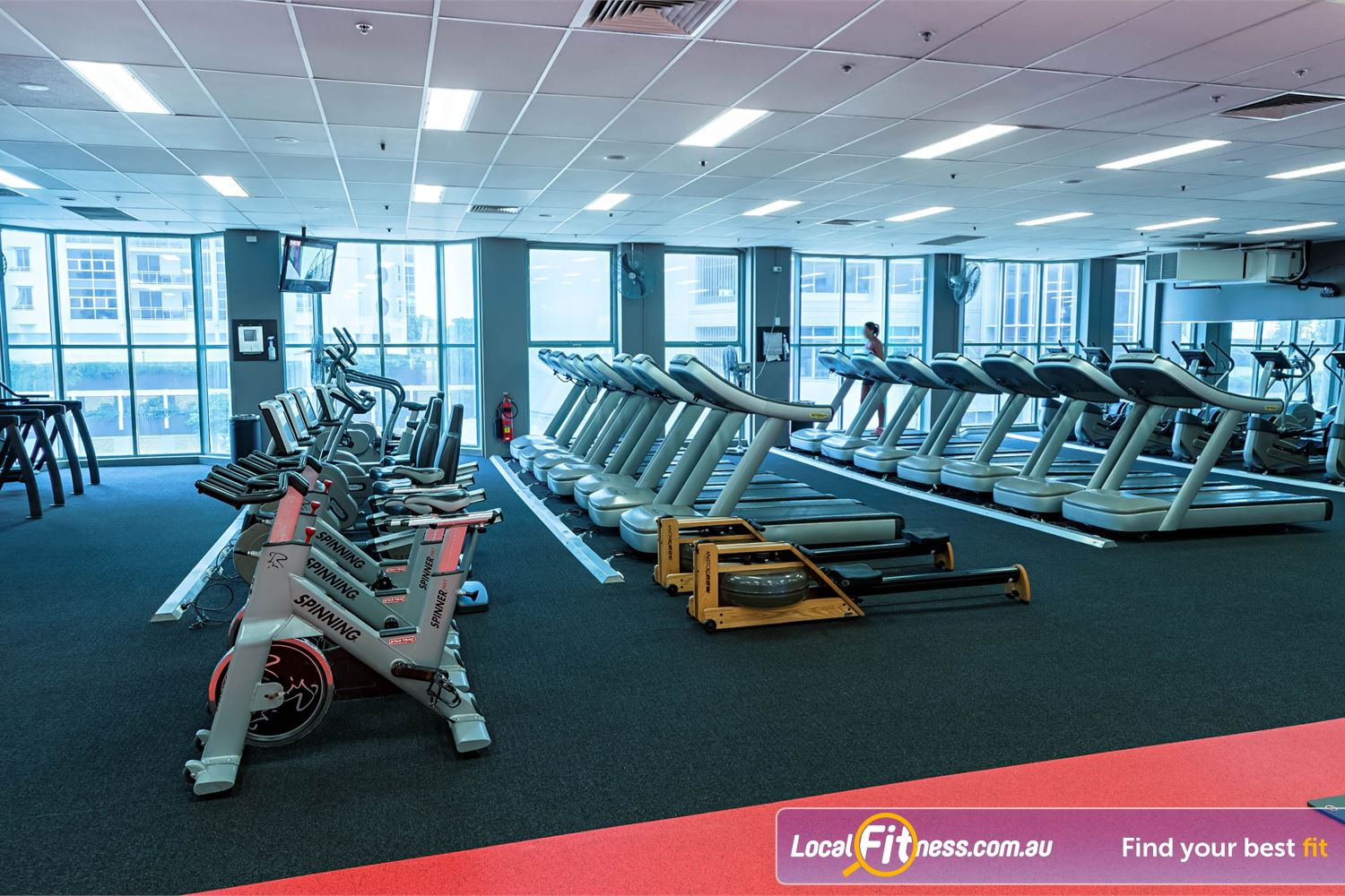Fitness First Platinum Spring St Near Queens Park The fully equipped Spring St Bondi cardio area.
