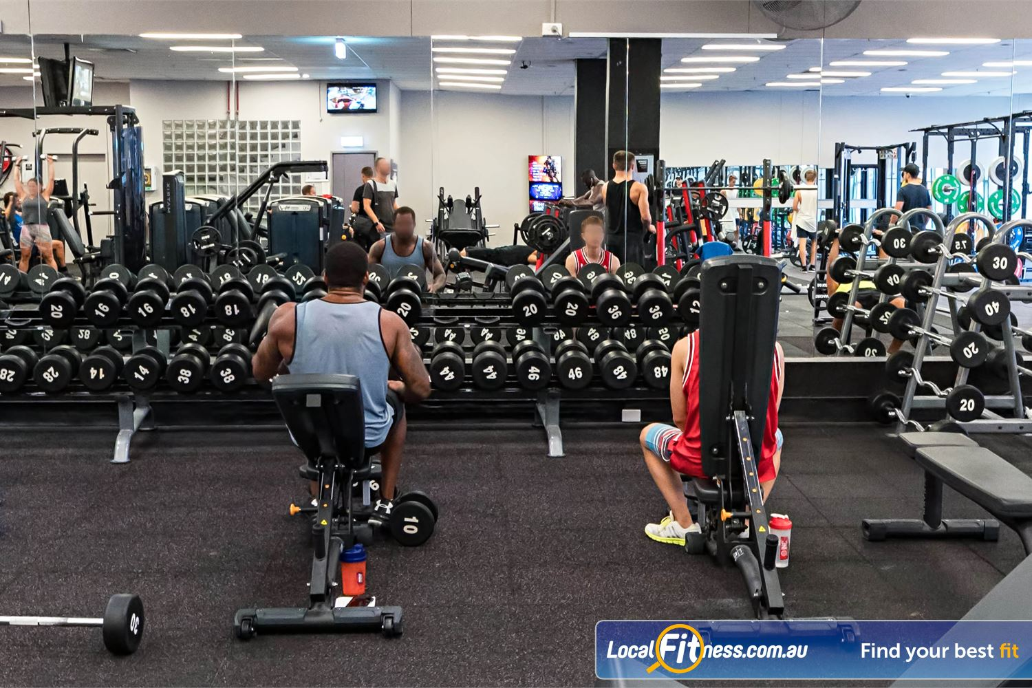 Fitness First Platinum Spring St Near Bellevue Hill Our free-weights area includes a full range of dumbbells, barbells, benches and more.