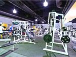 Full range of dumbbells, barbells and benches.
