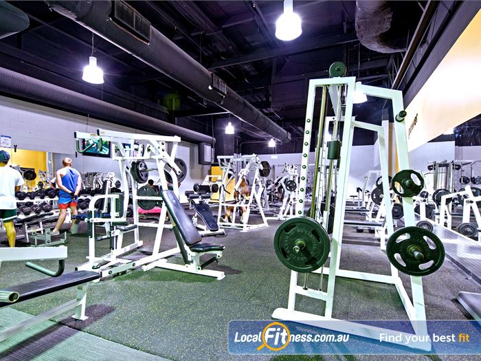 Vibe Health Clubs Gym Kellyville    Full range of dumbbells, barbells and benches.