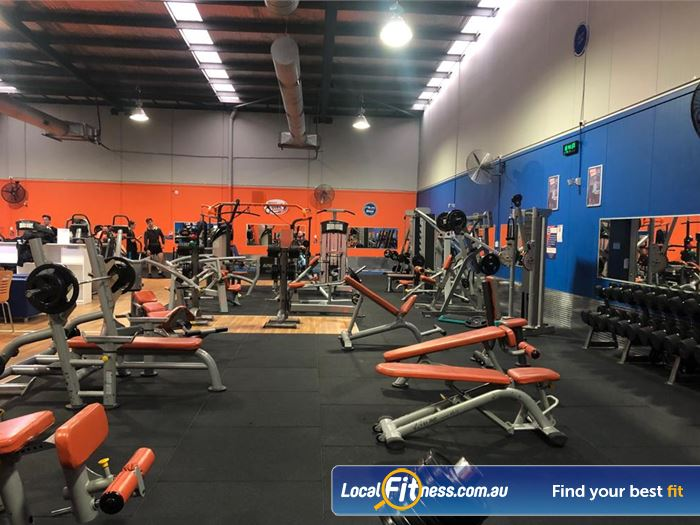 Plus Fitness Health Clubs Gym Kellyville    Fully equipped with free-weights for strength training.