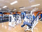 Plus Fitness Health Clubs Elderslie Gym Fitness Easy to use pin-loading