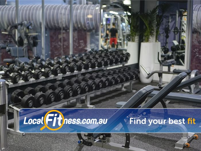 Anytime Fitness Glen Waverley Gym Fitness The comprehensive free-weights