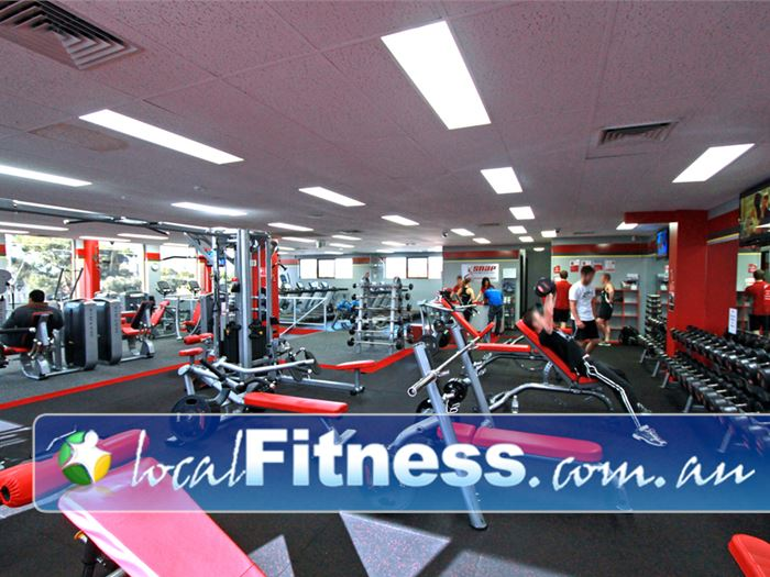 Snap Fitness Gym Indooroopilly  | Fully equipped for strength training.