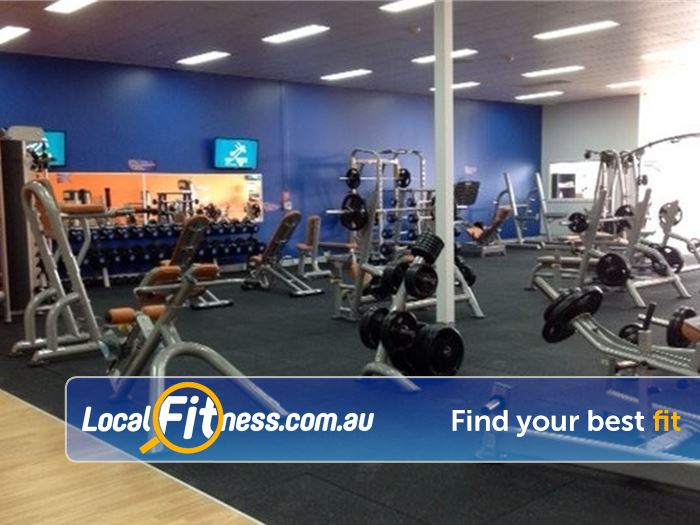 Plus Fitness 24/7 Carseldine Near Strathpine The fully equipped free-weights area at Plus Fitness Carseldine gym.