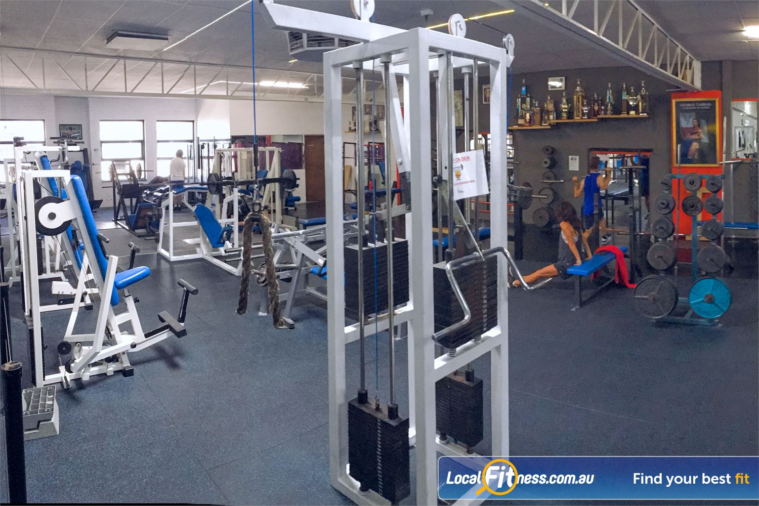 Tabban Muscle & Body Shape Near Toorak Train at the Tabban gym that has trained champions for over 30 years.