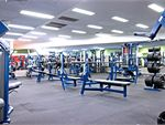 World Gym Bankstown Gym Fitness Welcome to the state of the art