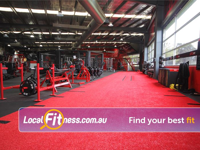 UFC Gym Fountain Gate Gym Belgrave  | Welcome to UFC Gym Fountain Gate.