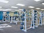 Goodlife Health Clubs Valley View Gym Fitness An extensive range of dumbbell
