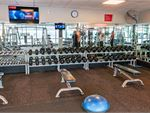 Fitness First Platinum Manly Vale Gym Fitness Our free-weights area is fully