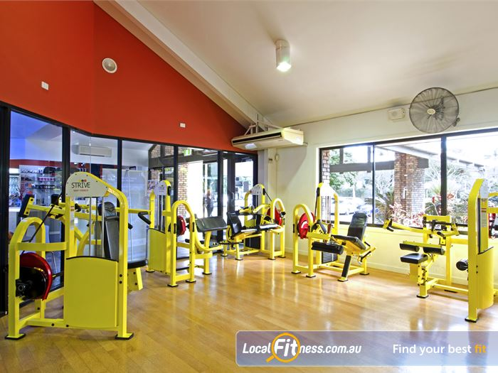 Goodlife Health Clubs Gym Carseldine  | Our Carseldine gym includes the innovative 1-2-3 Strive