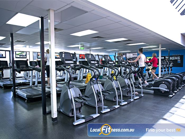 Goodlife Health Clubs Gym Adelaide  | The Booval gym cardio area provides natural lighting.