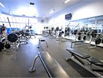 Goodlife Health Clubs Burnside Gym Fitness Our free weights area.