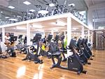 Goodlife Health Clubs Gilles Plains Gym Fitness Our Dernancourt gym cardio area