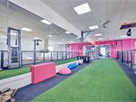 The dedicated functional training area with indoor sled
