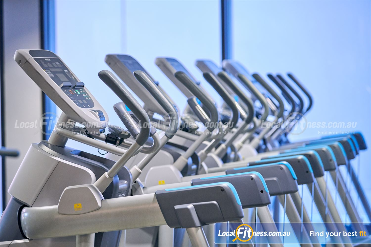 Fitness First Near Kellyville Rows of cardio machines at our Castle Hill gym.