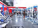 Adrenalin Gym Mornington Gym Fitness Comprehensive leg training