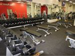 Fully equipped free-weights area in our Malvern gym.