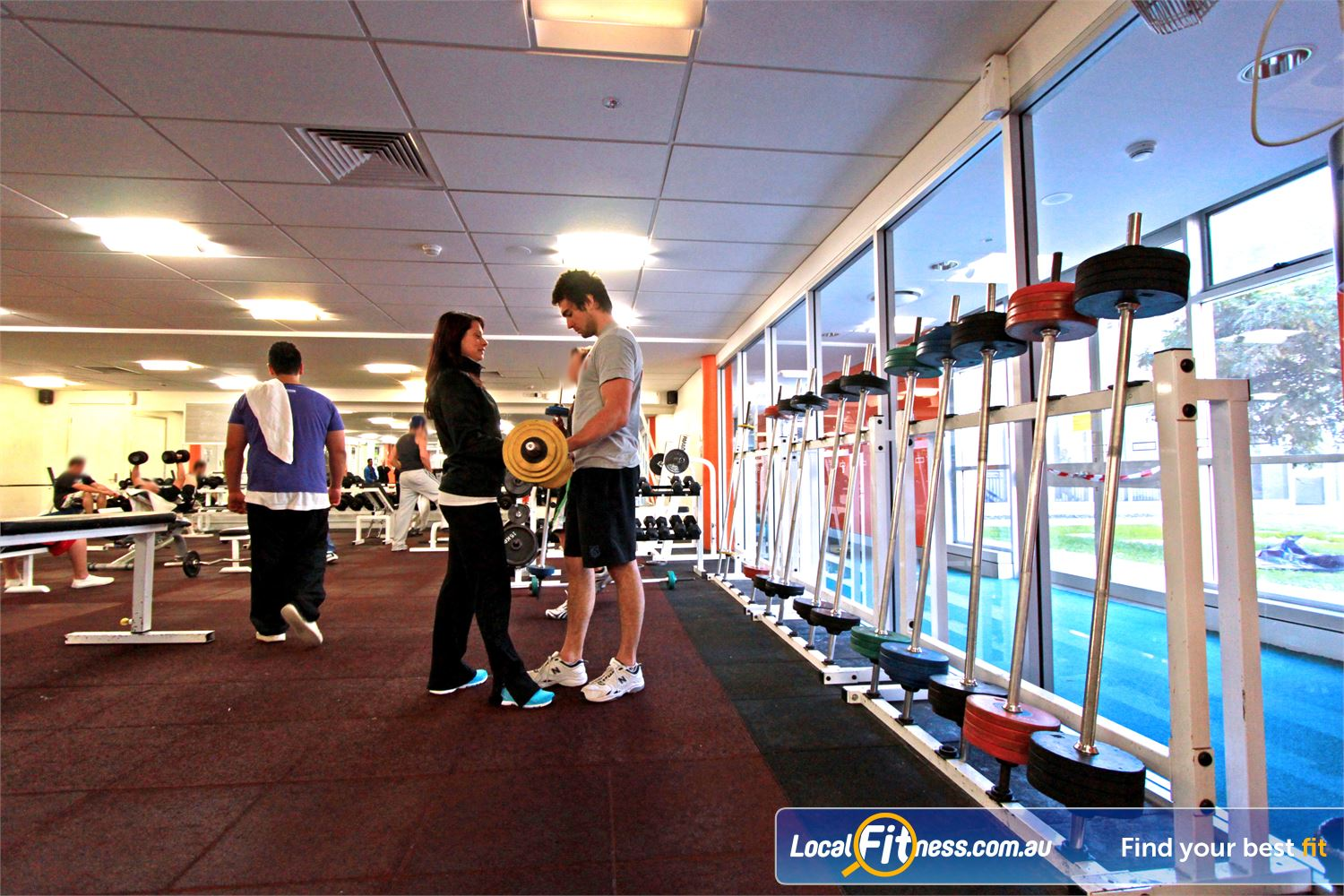 Students lift weights together in the gym