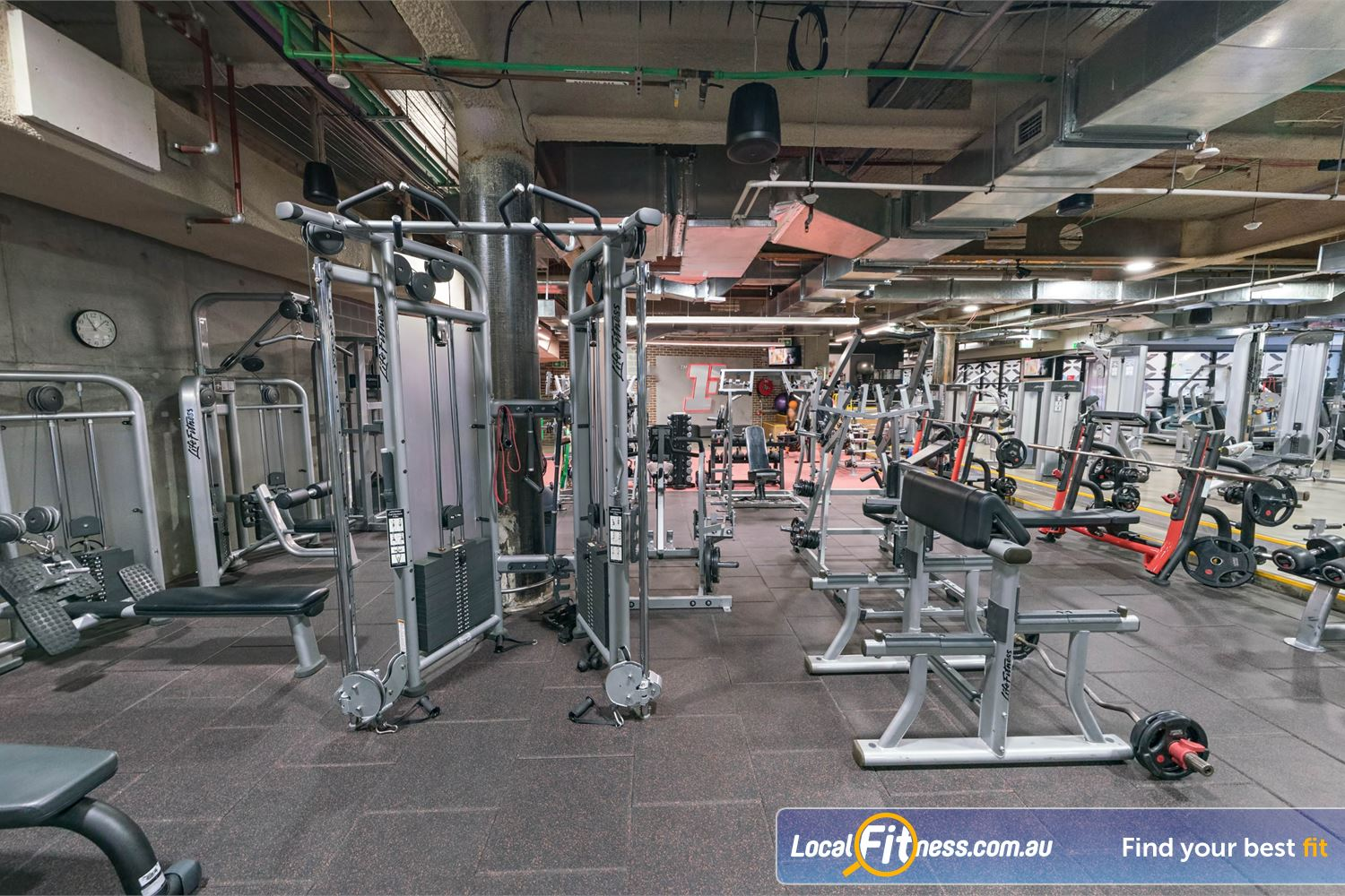 Fitness First Platinum Shelley St Sydney Our pin-loading machines cater for every muscle group.
