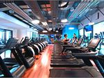 Goodlife Health Clubs Docklands Gym Fitness Rows of cardio machines to pump