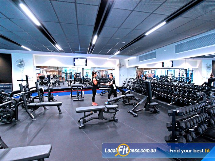 Goodlife Health Clubs Gym Kensington  | The spacious free-weights area at Goodlife Dockalnds.