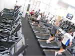 The spacious and fully equipped cardio area.