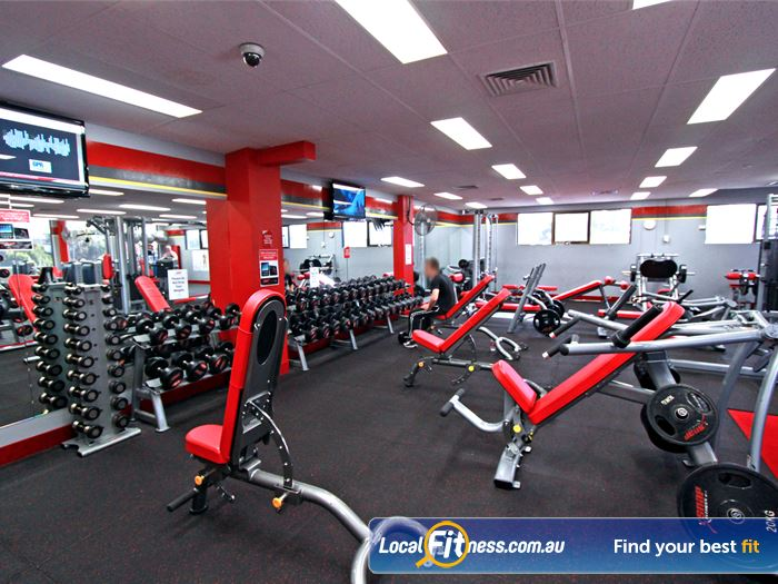Snap Fitness Highett Gym Fitness Fully equipped free-weeights