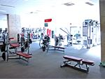 Fully equipped Sydney Ultimo gym free-weights area.
