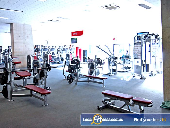 Ian Thorpe Aquatic Centre Gym Erskineville  | Fully equipped Sydney Ultimo gym free-weights area.