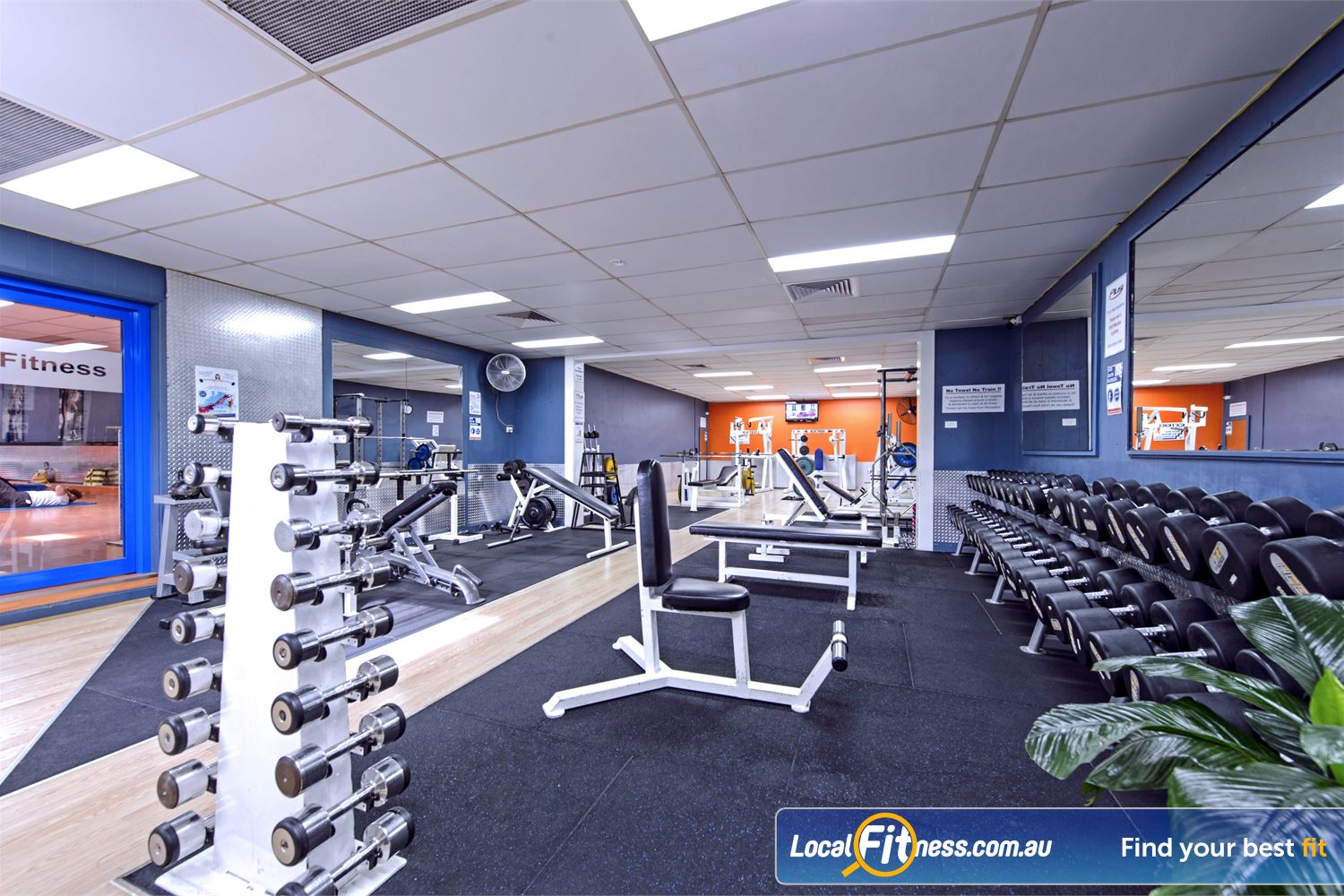 Plus Fitness Health Clubs Northmead Our fully equipped free-weights and strength training area.